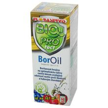 BOR OIL 50ml - FLORASYSTEM